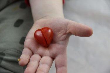 Tomatenherz Herzen zum Anbeißen - Herz Rezept zum Valentinstag Muttertag