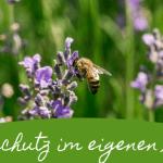Den Garten mit Kindern bienenfreundlich gestalten: 5 Ideen