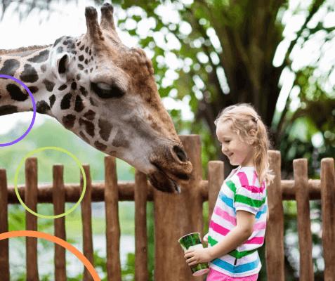 Giraffensprache - achtsam und bedürfnisorientiert