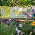 Über Urban Gardening besser informiert